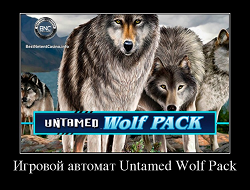 Слот Wolf pack от Microgaming