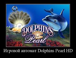 игровой автомат dolphins