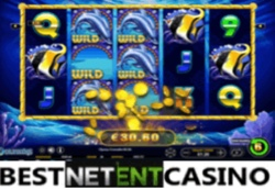 Dolphins slot