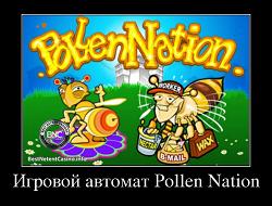 Игровой автомат pollen nation игровые автоматы карты бесплатно и без регистрации