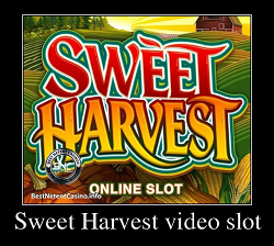 Sweet Harvest slot