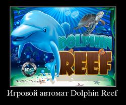 слот игра дельфин