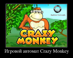 crazy monkey игровые автоматы бесплатно