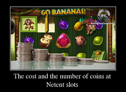 The cost and the number of coins at pokies
